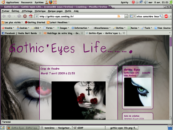 http://gothic-eyes.cowblog.fr/images/Capture.png